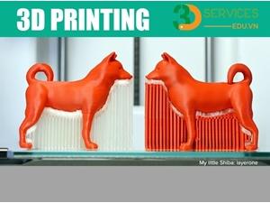 Khóa học thiết kế sản phẩm và vận hành máy in 3D